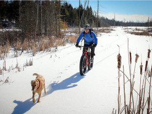 Fat Bike Trend Ride Rent In Winter Ontario Ontario