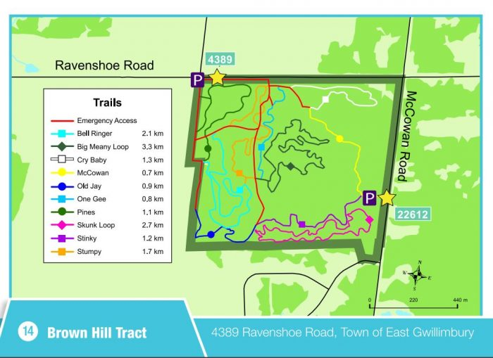 Ravenshoe Brown Hill bike trails