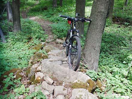 Agreement Forest – MTB Trail