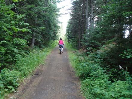 Algonquin – Rail Trail