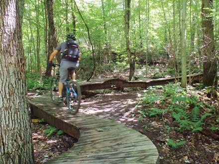 Durham Forest – MTB / Park Trail