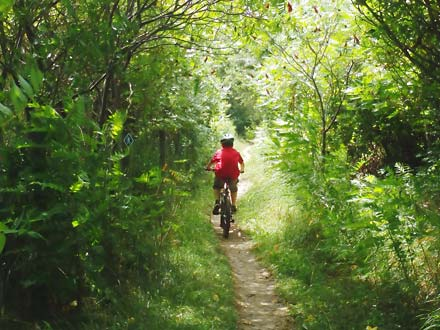 Fanshawe – MTB / Park Trail