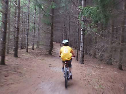 Guelph Lake – MTB / Park Trail