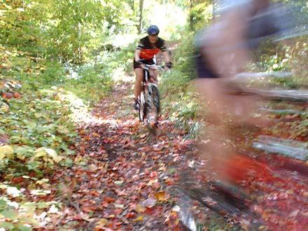 Haliburton Forest – MTB Trail