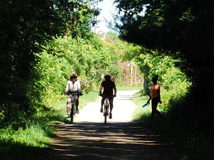 Hamilton Brantford – Rail Trail