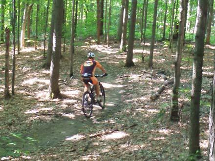 Hardwood – MTB Trail