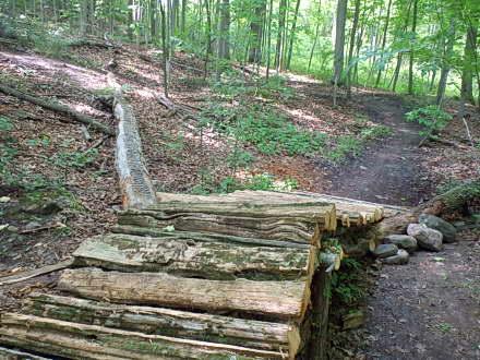 Harold Town – MTB Trail