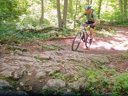 Kelso – MTB Trail