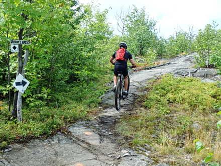 Naughton – MTB Trail