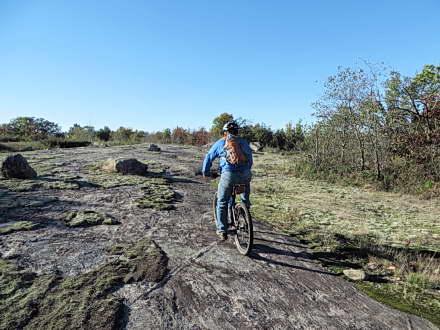 Torrance Barrens – MTB Trail