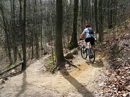 Centennial Park – MTB Trail