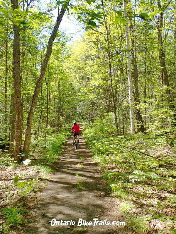 bf135b0c5ae Hiawatha - MTB Trail - Ontario Bike Trails