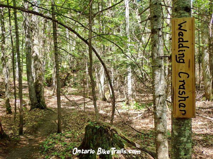 a45f48f0805 Hiawatha MTB trails_15. Hiawatha MTB trail. hiking path