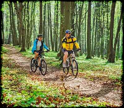 two bicycles in woods
