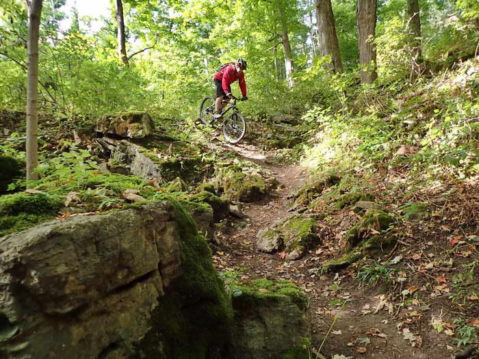 Waterdown – MTB / DH Trail