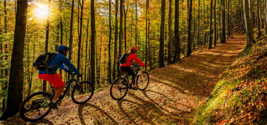 2 MTB riders on trail