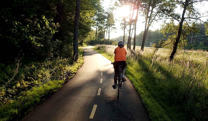 bike path and cyclist